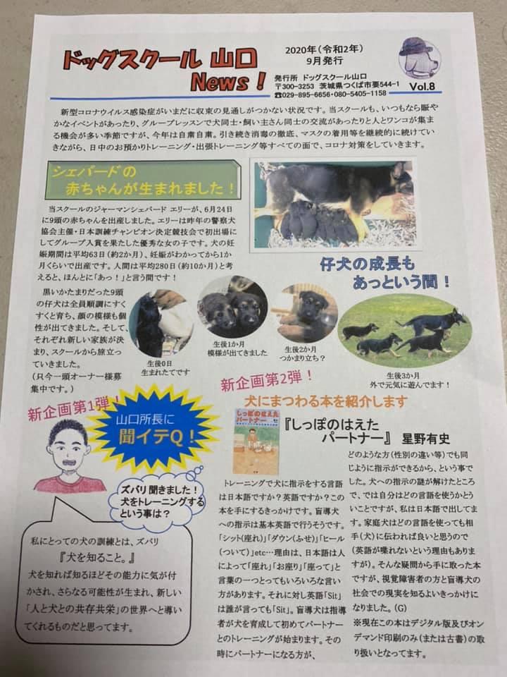 ドッグスクール山口 News VOl.8page-visual ドッグスクール山口 News VOl.8ビジュアル